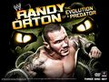 wwe - Evolution of a predator wallpaper