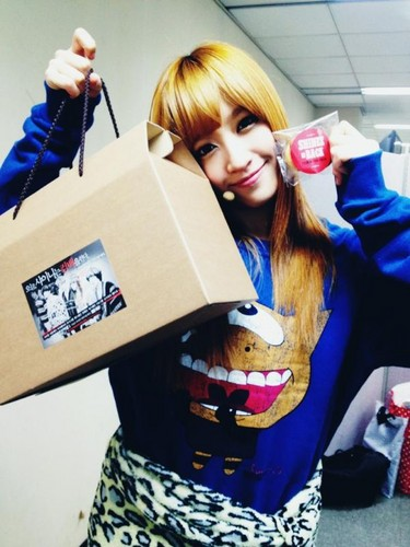 EXID (이엑스아이디) fondo de pantalla containing a packing box called Hani