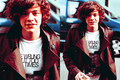 Harry Styles - harry-styles
