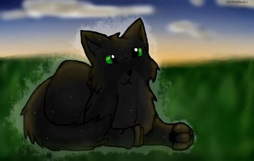 Hollyleaf's Shadow of the 日