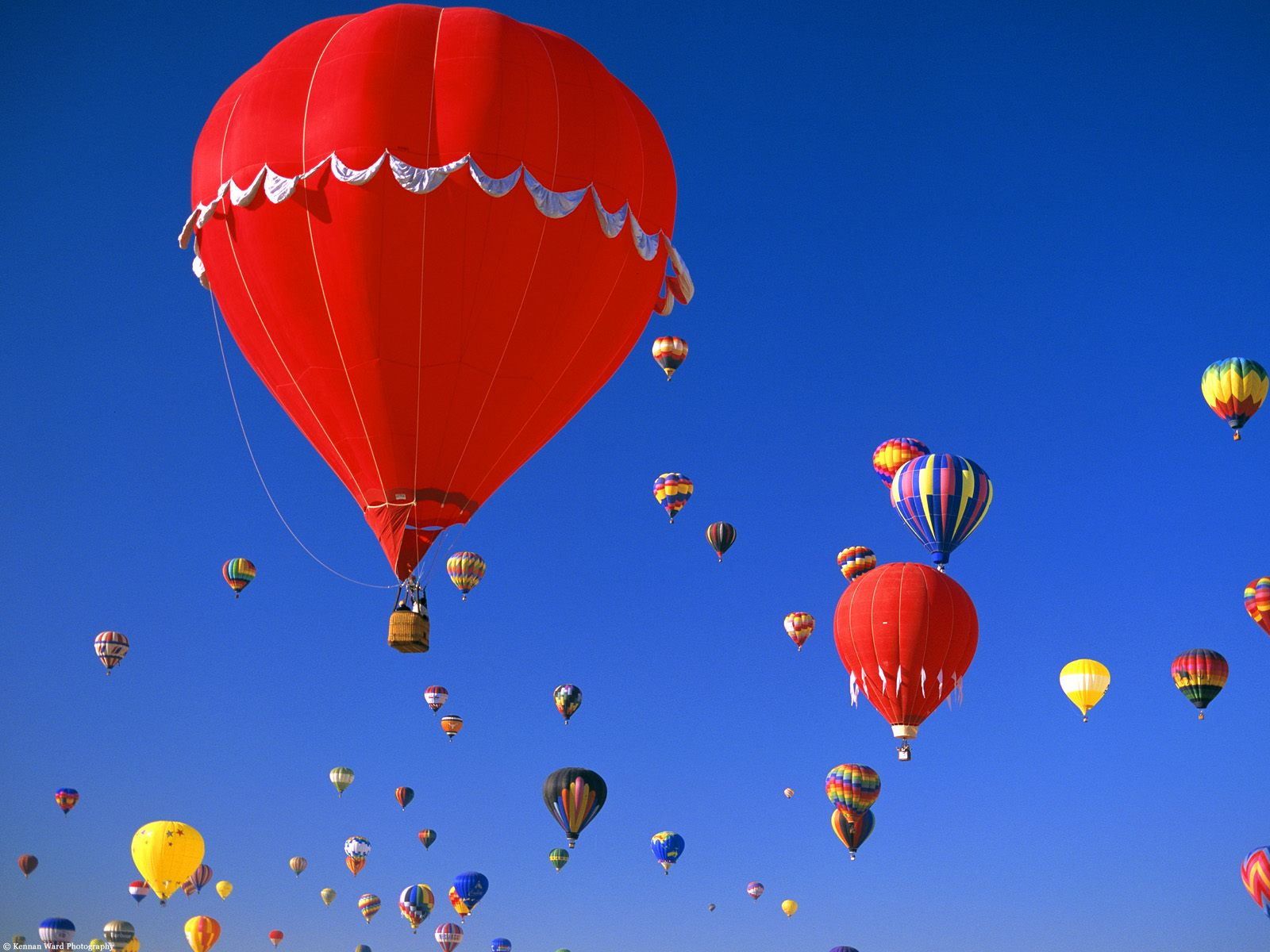 feelmyswagger images hot air balloons hd wallpaper and background