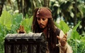Jack Sparrow wallpaper - captain-jack-sparrow wallpaper