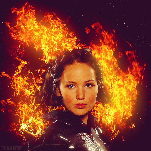 Katniss Everdeen - Katniss Everdeen Photo (30496661) - Fanpop