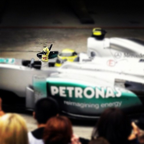 Number 1 - nico-rosberg Photo
