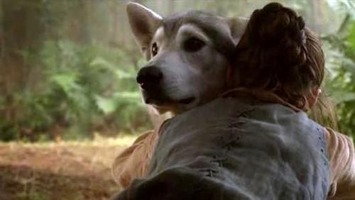 Nymeria and Arya