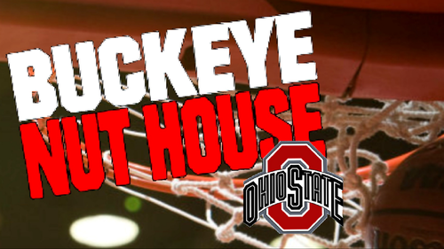 OSU bola basket BUCKEYE NUT HOUSE