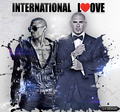 Pitbull and Chris Brown  - pitbull-rapper photo