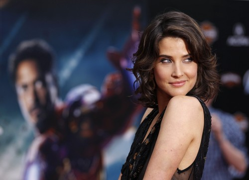 Cobie Smulders Hintergrund possibly with a portrait entitled Cobie Smulders