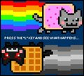 Push L? - nyan-cat photo