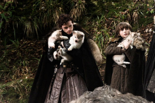 Robb and Bran with direwolfs