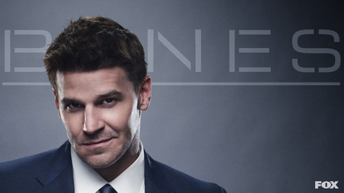Seeley Booth দেওয়ালপত্র with a business suit, a suit, and a three piece suit titled Seeley <3