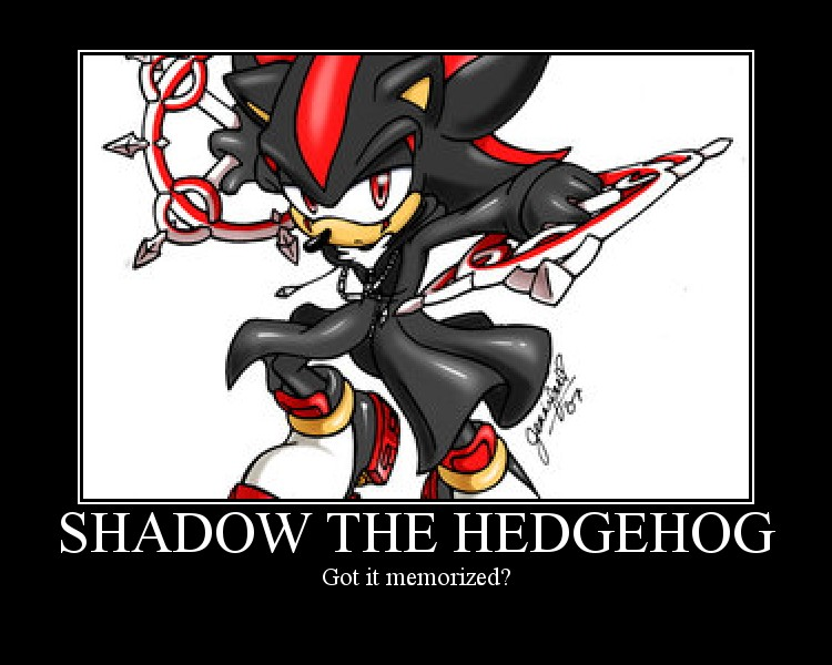 Shadow the hedgehog shadow the hedgehog