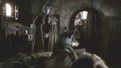 Summer and Theon Greyjoy