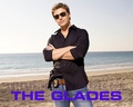 The Glades <3