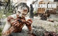 "The Waking Dead ""Walkpaper"" - the-walking-dead wallpaper"
