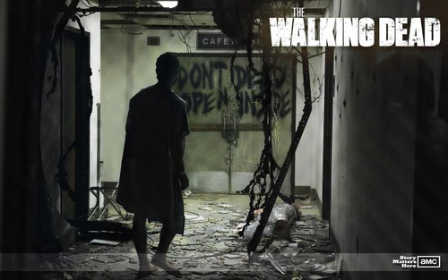 "The Walking dead wallpaper probably with a street, a sign, and a penal institution called The Waking Dead ""Walkpaper"""