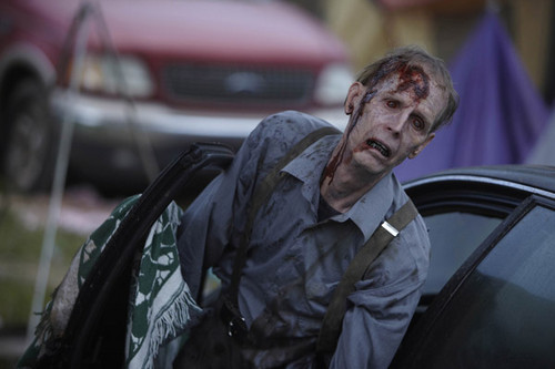 "The Waking Dead ""Walkpaper"" - the-walking-dead Photo"