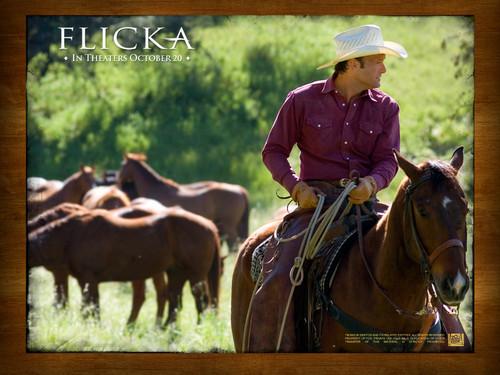 Tim McGraw in Flicka