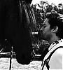 Tobey Maguire photo possibly containing a horse wrangler and a green beret titled Tobey Maguire Icon