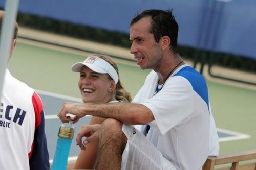 Vaidisova and Stepanek 2008