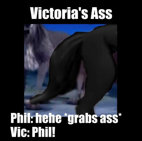 Victoria's pantat, keledai