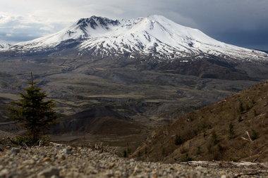 भेड़िया Mountain