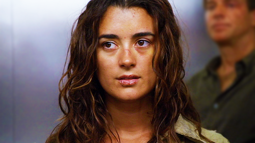 Ziva David - cote-de-pablo Fan Art
