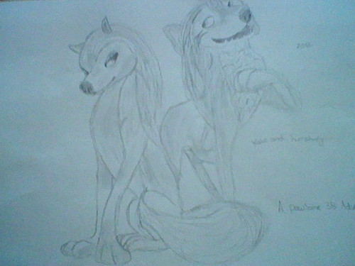"Lilly from the movie ""Alpha and omega"" fond d'écran entitled kate and humphrey"