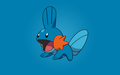 mudkip - water-type-pokemon photo