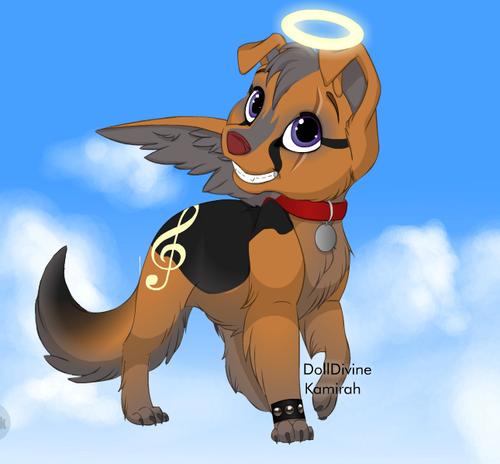 rusty the angel کتے
