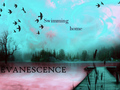 swimming home - evanescence wallpaper