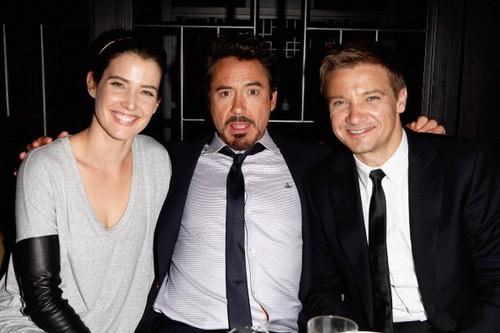 """""""The Avengers"""" Premiere رات کے کھانے, شام کا کھانا"""