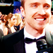 Aaron Paul - aaron-paul icon