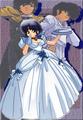 Akane, Ranma, and Ryoga