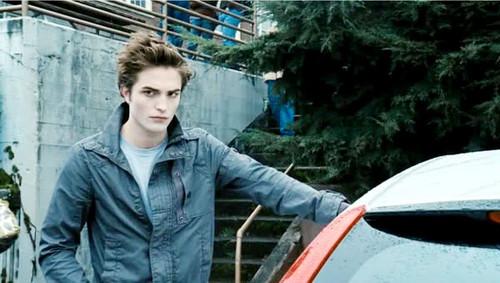 Assorted Twilight picha