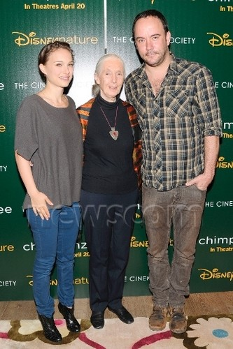 "Attending a screening of ""Chimpanzee"" によって hosts Disneynature & The Cinema Society, NYC (April 14th 20"