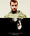 Baratheon Brothers - house-baratheon fan art
