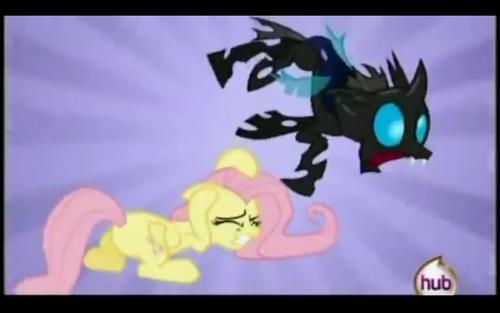 Battling Ponies