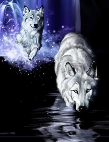 Beautiful 2 狼
