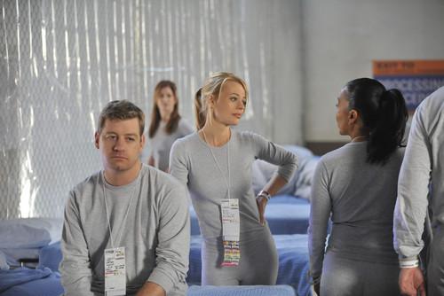 Body of Proof - Season 2 Stills