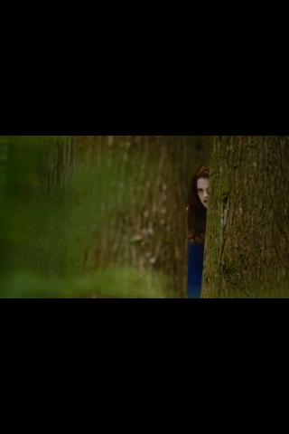 Breaking Dawn Prt. 2