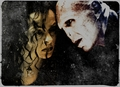 Burn, Love, Burn - bellatrix-lestrange fan art