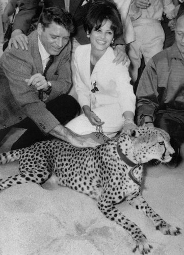 Burt Lancaster & Claudia Cardinale