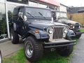 CJ7s - jeep photo