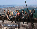 CSINewYork - csi-ny photo