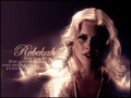 ClaireHolt - claire-holt wallpaper