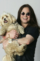 Dave Hogan Photoshoot - ozzy-osbourne photo