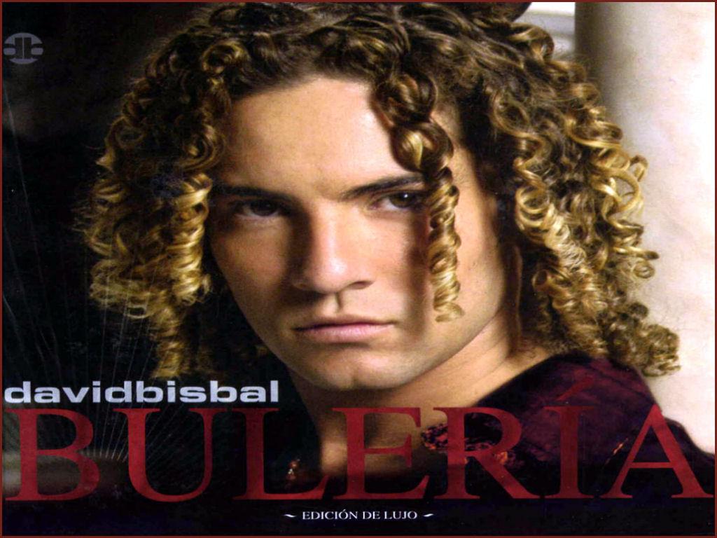 www david bisbal com: