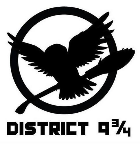District 9 3/4 Pin
