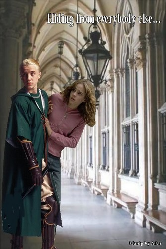 Dramione - draco-malfoy-and-hermione-granger Photo
